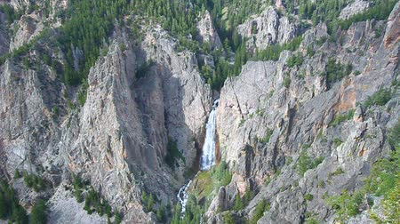 awesome : Bucking Mule Falls flows into a huge canyon in the Bighorn National Forest of Wyoming Stock Footage