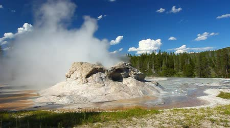 erupt : Small spurts of water erupt from Grotto Geyser in Yellowstone National Park - Wyoming Stock Footage