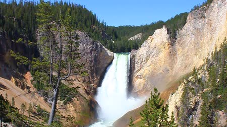 luz do dia : Lower Falls of the Yellowstone River illuminated in bright sunlight at Yellowstone National Park of Wyoming Vídeos