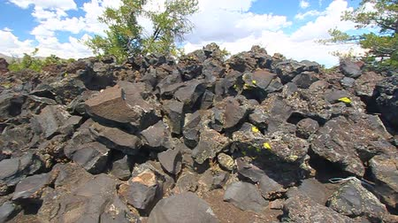 metamorphic : Devils Orchard at Craters of the Moon National Monument