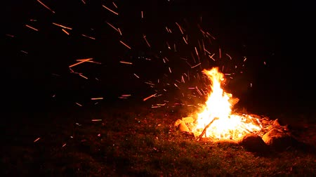 şenlik ateşi : Flames of a cozy campfire flicker in a light breeze against a dark night