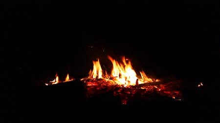 ember : Flames of a campfire flicker in the night Stock Footage