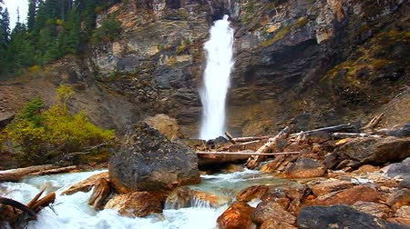 řev : Beautiful Laughing Falls of Yoho National Park in Canada Dostupné videozáznamy