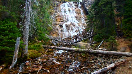 koronka : Point Lace Falls in Yoho National Park of Canada Wideo