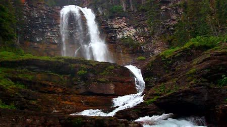 batı : Virginia Falls Glacier National Park Stok Video