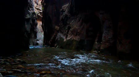creek : Virgin River flows through The Narrows of Zion Canyon in Utah