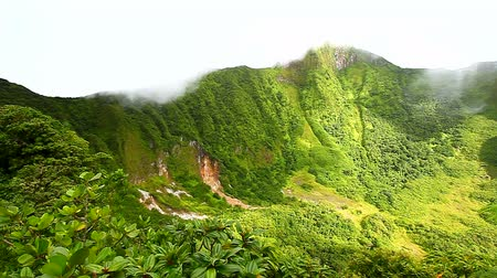 spící : Saint Kitts Rainforest Crater