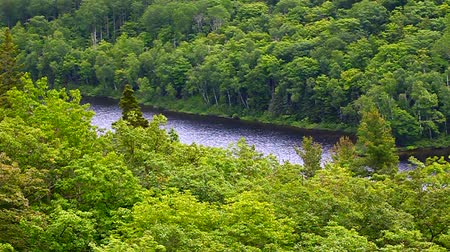 kapr : Lake of the Clouds at Porcupine Mountains State Park in northern Michigan Dostupné videozáznamy