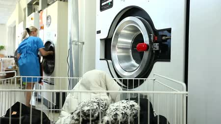 çamaşırhane : Woman gets clean clothes from washing machine in laundry Stok Video