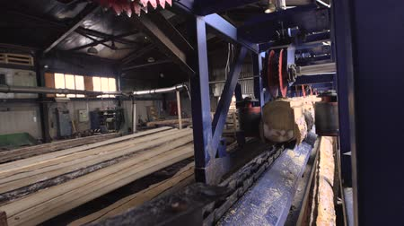 changer : View of cutting machinery at saw mill Stock Footage