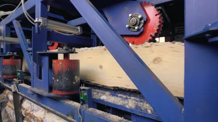 sawn : View of cutting machinery at saw mill Stock Footage