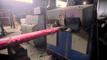 önlemek : View of cutting machinery at saw mill Stok Video