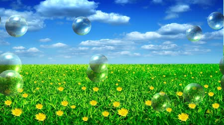 vago : meadow with bubble