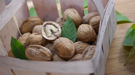 walnuts and walnut tree leaves Wideo