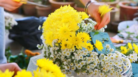kwiaciarnia : flower bouquet preparing Wideo
