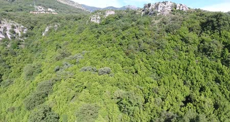 softwood forest : Flight above the mountains covered with deciduous and coniferous forests Stock Footage