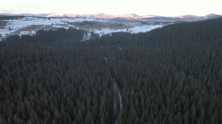 Aerial video shooting of a mountains covered with pine forest in the north of Montenegro in winter before sunset. Mountains covered with snow are visible in the distance Stok Video