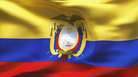 equador : Highly detailed textured flag with wrinkles and seams  Vídeos