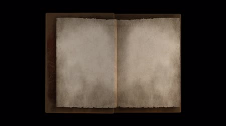 livros : Animated turning pages in old book portrait with alpha channel