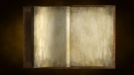 blank : Old book portrait