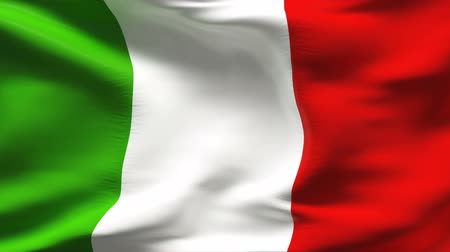 İtalyan : Textured ITALIAN cotton flag with wrinkles and seams