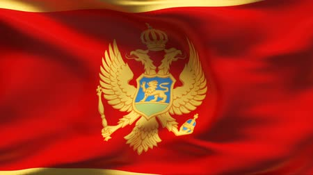 Черногория : Textured MONTENEGRO cotton flag with wrinkles and seams  Стоковые видеозаписи