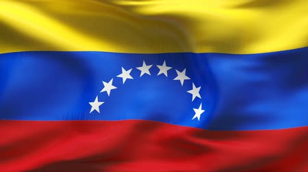 bandeira : Textured VENEZUELA cotton flag with wrinkles and seams