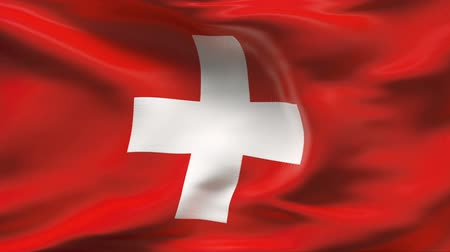 suíça : Creased SWISS flag in wind - slow motion  Vídeos