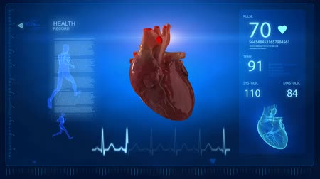 kardiyoloji : Human heart with pulse trace monitor