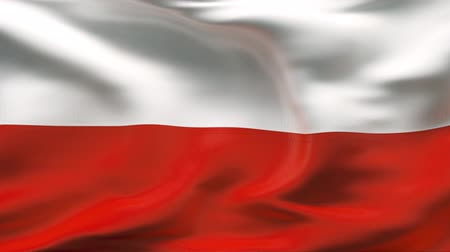 lengyelország : Creased POLAND flag in wind - slow motion
