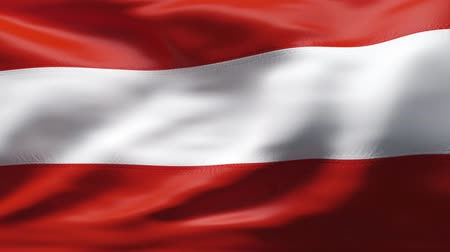 ausztria : Creased satin AUSTRIA flag in wind in slow motion  Stock mozgókép