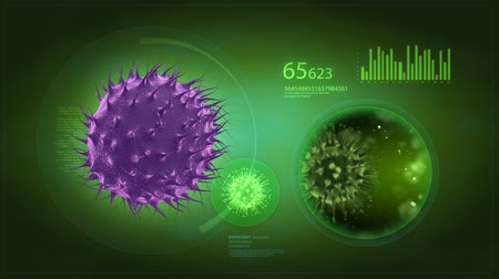 baktériumok : Medical display - flu and bacteria concept