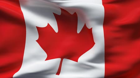 kanada : Creased satin CANADA flag in wind in slow motion  Stok Video