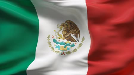 bandeira : Creased satin MEXICO flag in wind in slow motion