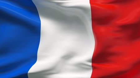 francês : Creased satin FRANCE flag in wind in slow motion