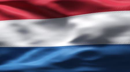 holandês : Dutch Flag in wind in slow motion  Stock Footage