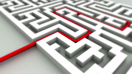 решение : Success concept in maze