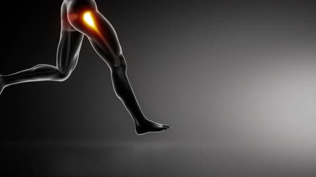 biodro : Running man with hip joint detail lateral view  Wideo