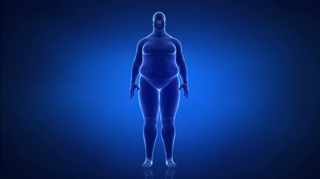tłuszcz : Obesity and helathy life style concept  anterior view Wideo