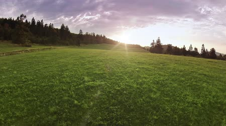 procura : Sunset over hill and meadows aerial footage