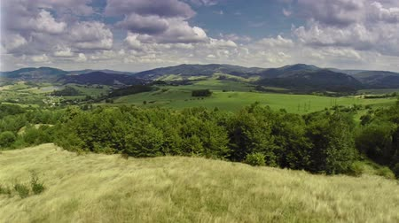 panorâmico : Meadow and sky aerial footage