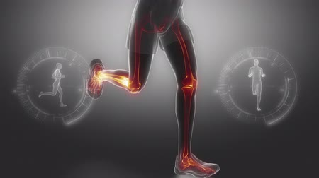kolano : Running man leg bones and joints scan