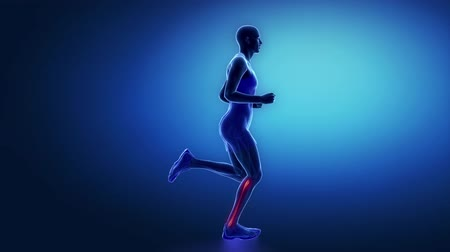 kolano : Runner patella knee animation Wideo