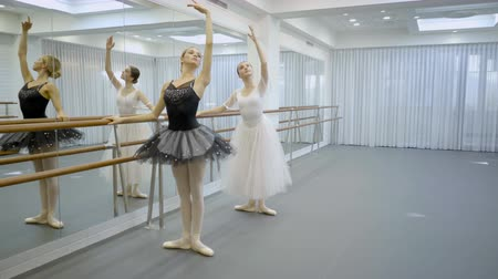 holding onto : Beautiful ballerinas practice near barre in ballet studio. Young ladies stand and hold onto bar and raise one hand, arching slim body back. Two dancers dressed in stylish outfit and pointe shoes on feet, moving with figure gracefully, mastering techniques