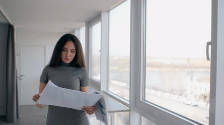 felülnézet : Young lawyer businesswoman broker is reading business plan, standing in modern office, front view of American sexy woman wearing dress is working with documents in bright interior with windows. Concept: new project, female expert, work day. Stock mozgókép