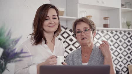 netbook : Beautiful, good-looking mature and mid-aged woman looking at laptop display, making nice smile. They spending lovely weekend day in bright and stylish modern interior with soft daylight Stock Footage