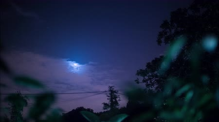 aydınlatmalı : 4K Full shining moon at night rising between trees with clouds passing by in Portugal