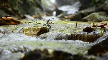 zuhatag : Close up footage,river rapids flowing through mossy rock