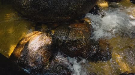 rapids : Close up footage,river rapids flowing through mossy rock
