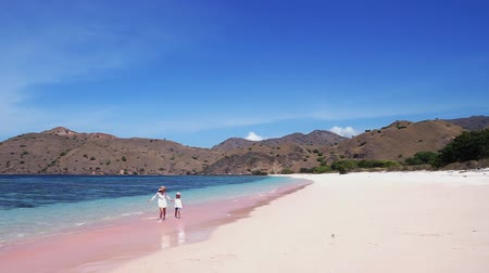 Флорес : Happy little girl and her mother walking on the Pink Beach while holding hands with beautiful landscape in Komodo Island close to Bali, Indonesia Стоковые видеозаписи